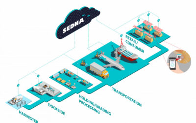 Sedna: Incentivizing the seafood supply chain