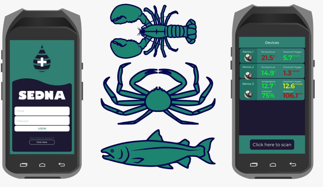 Traceability, Quality Monitoring, and Data Analysis: How Technology is Transforming the Seafood Supply Chain