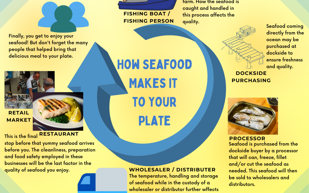 How Seafood Gets to Your Plate